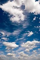 Cumulonimbus, Cumulus