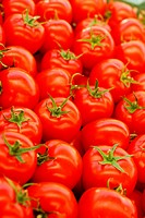 tomatoes backgrouns