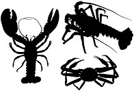 Some high_detailed silhouettes of crawfish and crab