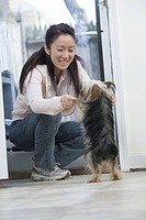 Young woman playing with a Yorkshire Terrier