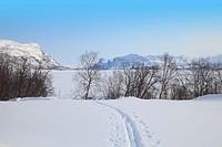 Suorva Stora sjöfallets national park Lappland Sweden.