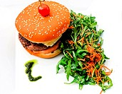 Cheese burger _ American cheese burger with fresh salad