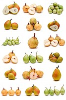 set of diferrent kind of pears isolated on a white background.