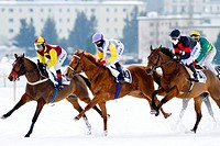 Horse racing, White Turf in St. Moritz, flat race, Alexander Pietsch on Anthology, Eduardo Pedroza on African Art, Robert Havlin on Ritorno, St. Morit...