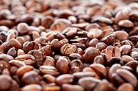 Pile of roasted coffee beans in closeup