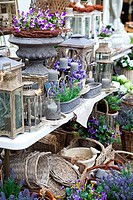 spring village shop with lavender