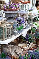 spring village shop with lavender