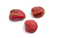 Whole Kola nuts on white background