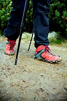 Nordic Walking on muddy path