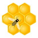 Honeycomb and bee isolated on a white background. Vector illustration.