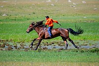 Asian boy very quickly goes on horseback across the steppe