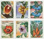Lao _ Circa 1984: a set of six stamps printed in Lao illustrating species of plants