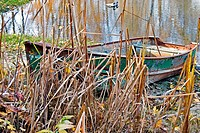 Rusty rowboat in fall weeds.