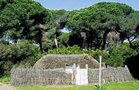 Primitive hut in the nature park of Coto de Doñana, reconstruction of a typical village of the Marisma, Guadalquivir, Costa de la Luz, Andalusia, Spai...