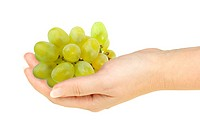 Green grape in a hand of woman. Isolated on white background. Close_up. Studio photography.