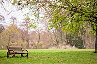 bench in a fresh green park at springtime, focus on bench
