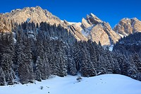 Alps, Alpstein, Alpstein area, Appenzell, view, mountain, mountain panorama, mountains, mountain panorama, trees, mountains, sky, massif, panorama, sn...