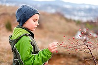 Boy picking red berries briar outdoor in countryside