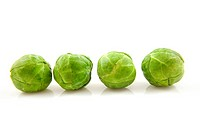 Four Brussels sprouts in a row over white background