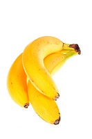 Bunch of bananas, photo on the white background