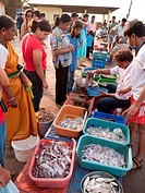 Stall selling fish and prawns at Chapora port, Goa