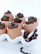 Chocolate eggs in real egg shells