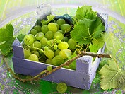 Crate of white grapes