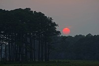 Summer sunset over Assateague Island.