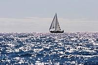 Segelyacht Koopmans 40