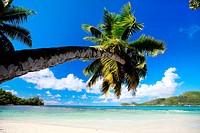 Perfekter Strand auf den Seychellen