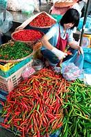 Menschen auf dem Grossen Lebensmittelmarkt von Talat Warorot in Chiang Mai im Norden von Thailand.