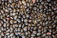 Black Velvet Beans