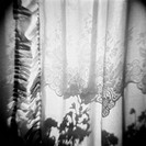 Curtain with Flower Shadow Annette Fournet