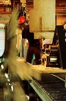 Sawmill operator