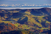 View from Belchen mountain towards the Swiss Alps, Autumn, Southern part of the Black Forest, Black Forest, Baden_Wuerttemberg, Germany, Europe