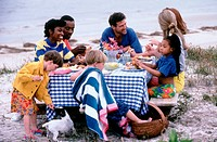 Family friends having a picnic at the beach