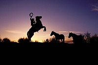Silhouette of cowboy and horses _ UT