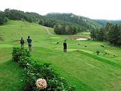 Naldehra Golf Course, Shimla, Himachal Pradesh, India / Naldehra Golfplatz, Shimla, Himachal Pradesh, Indien