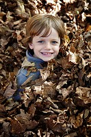 Smiling Boy in Pile of Leaves