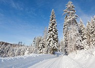 Forest road at Winter. Location Mäkrä Suonenjoki Finland Scandinavia Europe.