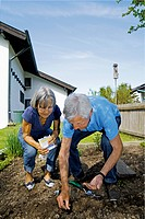 Germany, Bavaria, Senior couple seedling in garden
