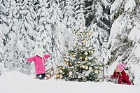 Austria, Salzburg County, Girls having fun in snow with christmas tree