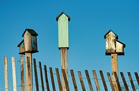 Three birdhouses, Delaware, USA