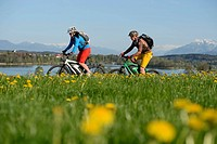 Cyclists on electric bicycles in front of Tachinger See lake, Chiemgau region, Upper Bavaria, Bavaria, Germany, Europe