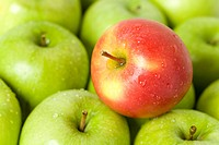 Red apple on green apples