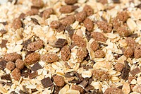 Detail of chocoalte muesli