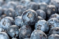 Detail of blueberries