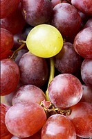 Single white grape on bunch of red grapes