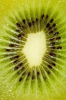 Detail of a kiwi