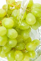 Green grapes are being washed